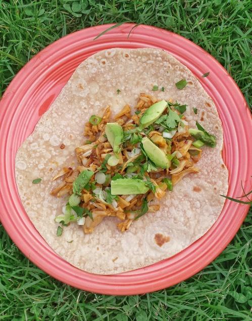 jackfruit asada tacos