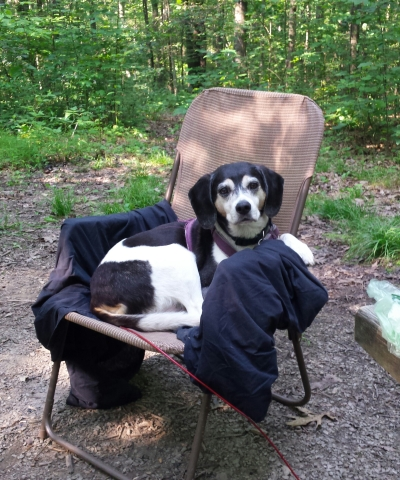 tucker camping chair