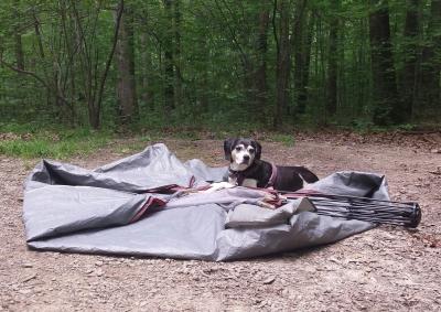 tucker camping