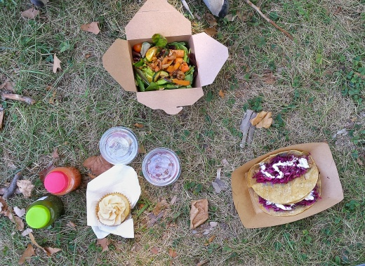vegfest picnic
